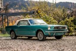 Mustang Lyson